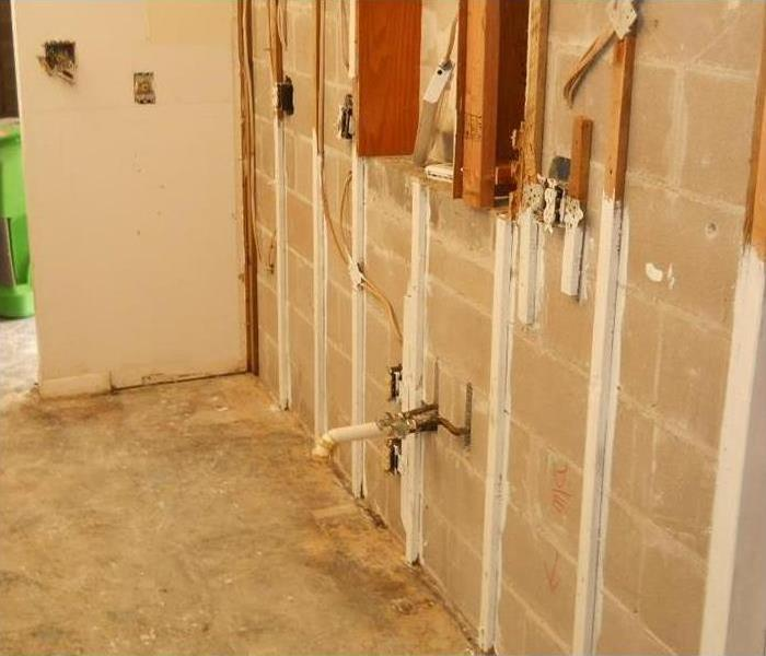 Mold Damage – Palatine Home After