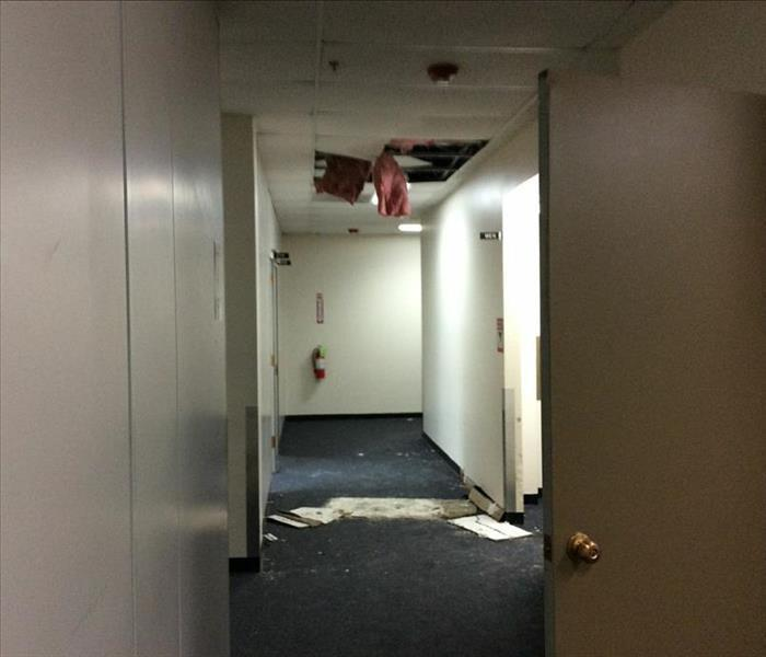 Office Water Damage - Rolling Meadows