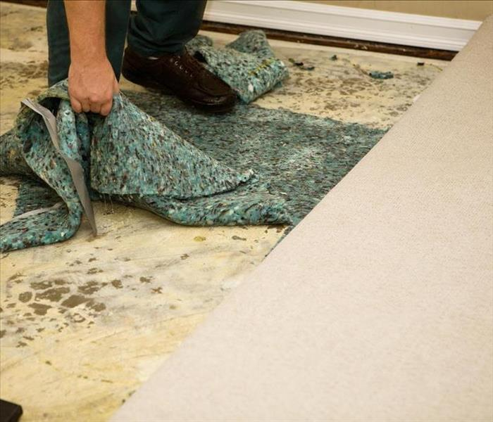 Water Damage How Water Removal is Performed in Palatine a Home