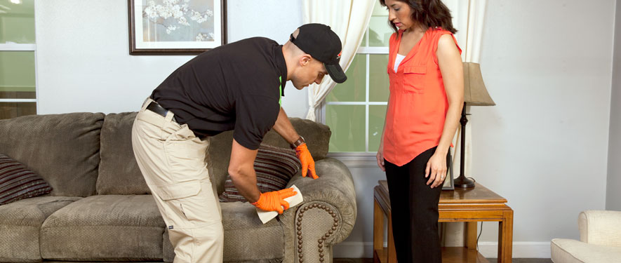 Palatine, IL carpet upholstery cleaning