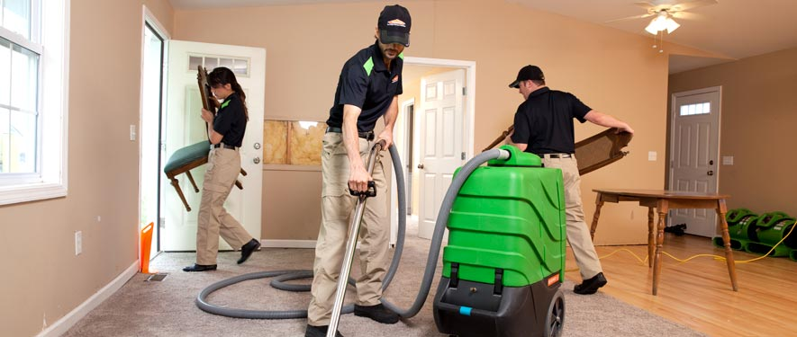 Palatine, IL cleaning services